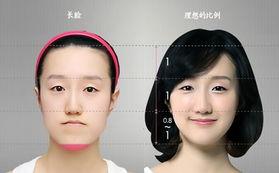 国内做整形的韩国医生哪个做得好?